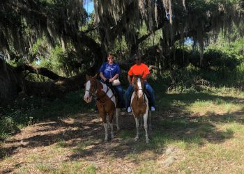 horse-riding-gallery-01