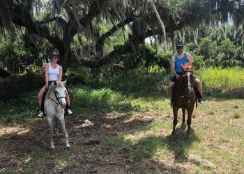 horse-riding-gallery-02