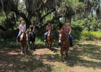 horse-riding-gallery-06
